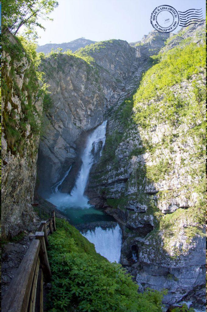 Sava river spring