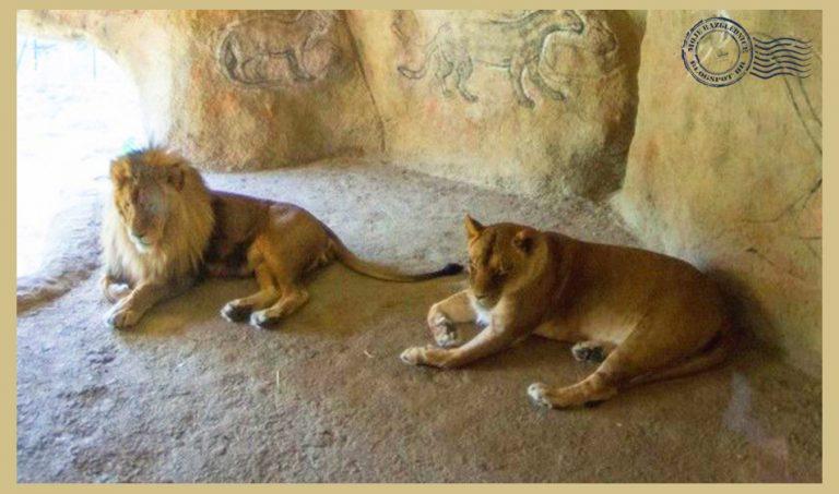 Zoo zagreb zološki vrt maksimir