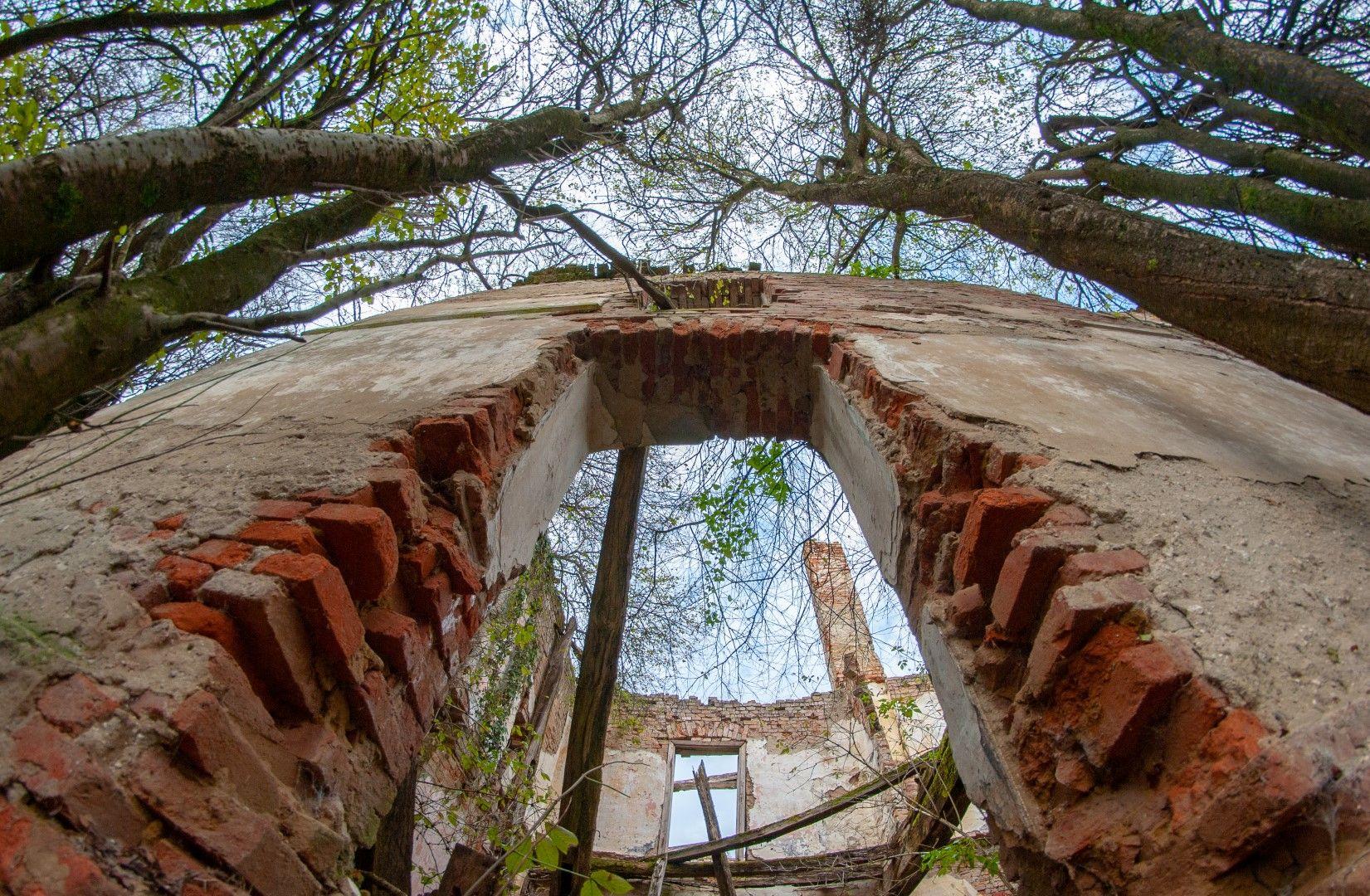 Kurija, Blahimir, Božjakovina, Lješčara ruševine