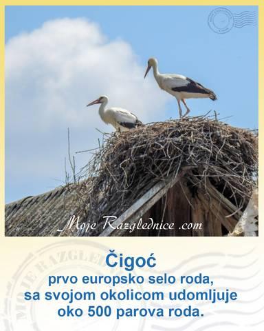 mojerazglednice.com (5)